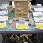 Thalasso - mořské produkty kosmetika