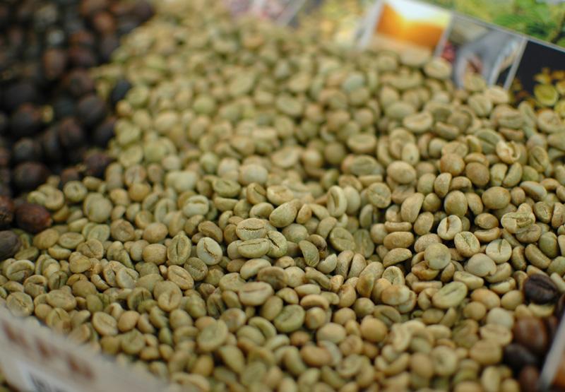 zelená-káva-wellness