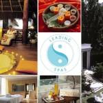 Světové lázně – The Leading spas- katalog a průvodce