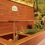 spa-wellness-lazne