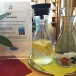 obcerstveni ve wellness jidlo (4)