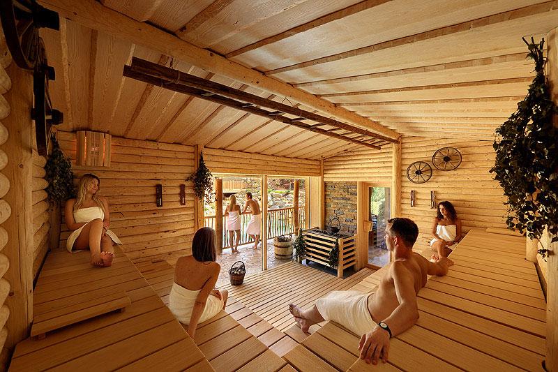 interier sauny Maximus