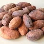 kakaove-boby-kosmetika
