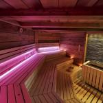 sauna-interiery Maximus