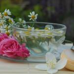 Aroma seminář s Jan Benham – zakladatelkou Institu Aromaterapie v Kanadě – pozvánka