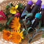 Den letního saunování – blahodárná letní sauna!