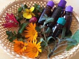aroma sauna bylinky wellness spa