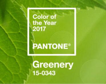 c1ea13b8e35 Wellness trendy 2017 – svěží zelená – Pantone barva roku 2017 ...