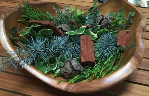 sauny-aromaterapie-bylinky-
