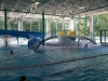 akvapark-horazdovice-bazen-2