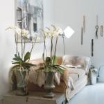 Wellness interiér plný květin - květiny ve wellness a spa