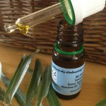 Jedinečná energie z rostlin – pro zdraví a krásu - Lentišek- Pistacia Lentiscus - řečík lentišek
