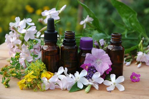 kosmetika spa wellness cz