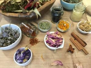 bylinky koreni spa wellness