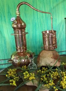 destilace-hydrolat-mimoza-w