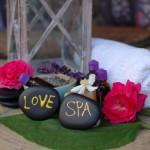 Konference Hotelové wellness & SPA - odborné setkání 16.9.2015