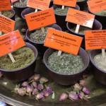 Mezinárodní seminář - koření a jeho léčivé účinky, praktické použití v kosmetice a wellness