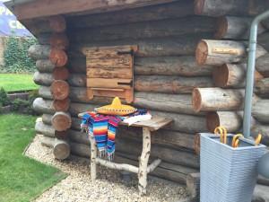 doma sauna venku wellness zahrada (5)