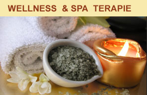 Wellness terapie a léčení