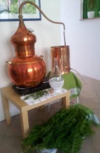 hydrolat-destilace-aroma-te
