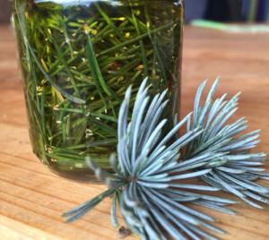 bylinky olej macerat wellness (4)