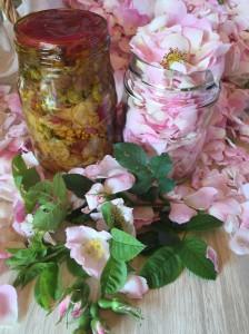 macerat olej bylinky wellness (10)