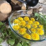 Jarní rituály v sauně  - aromaterapie do sauny pro očistu a znovuzrození - bylinky v sauně