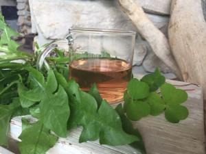 wellness bylinky sauna aroma (11)