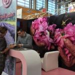 Novinky z celého světa na veletrhu bio kosmetiky a přírodní kosmetiky - Vivaness 2018